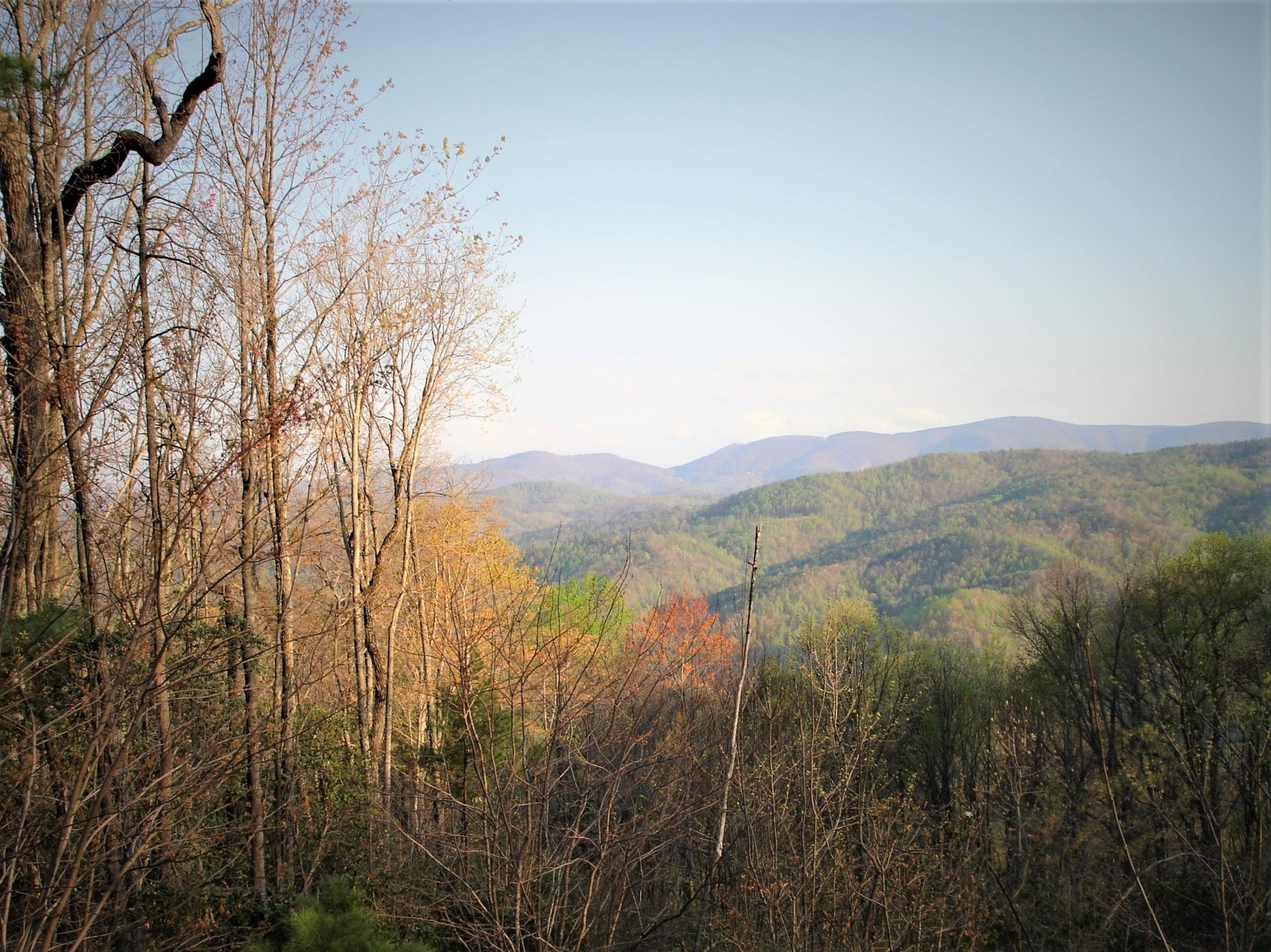 LEATHERWOOD MOUNTAIN LAND TRACT FOR AVAILABLE # 74