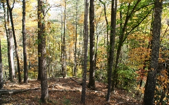 LEATHERWOOD MOUNTAIN NEAR BOONE NC Lot 103 MOTIVATED SELLER