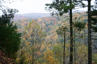 At The Foothills Of The Blueridge Mountains Choice Building Lot 1, 3.23+-AC