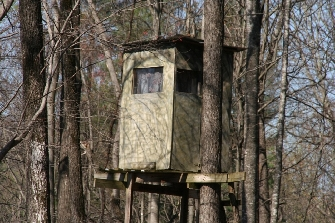 HUNTING PROPERTY WITH SPRING, SMALL BRANCH, TRAILS, AND WOODED
