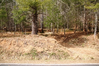 Reduced!!!  NICE 3 PLUS ACRES ON ELK CREEK DARBY ROAD FOR SALE, SOME VIEWS, GOOD BUILDING SITES.