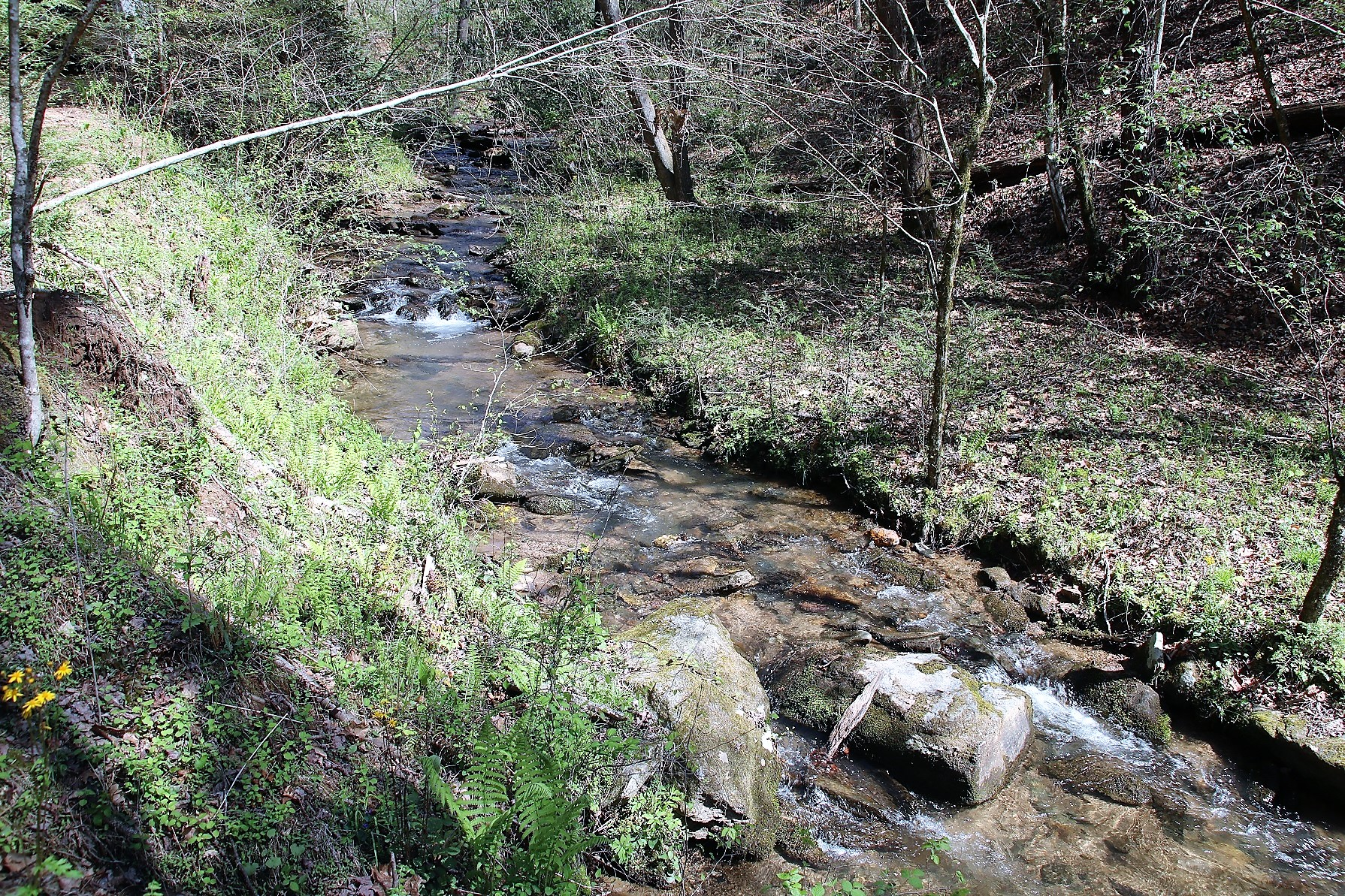 LAND FOR SALE 10 ACRES ON FLAG BRANCH CREEK IN WESTERN NORTH CAROLINA LEATHERWOOD MOUNTAINS
