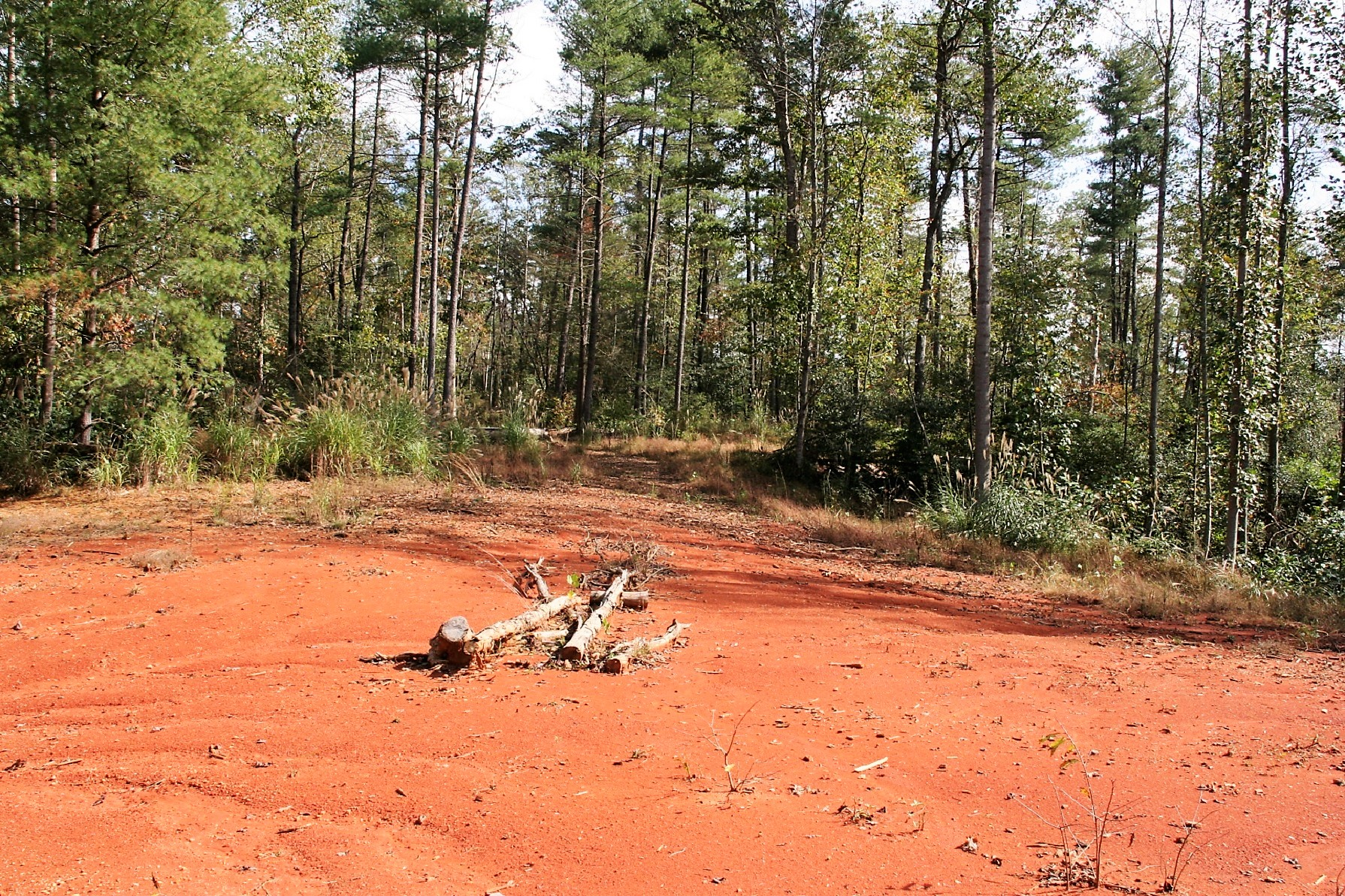 N. C. MOUNTAIN LAND FOR SALE GOOD HUNTING, SPRINGS,  CREEKS.