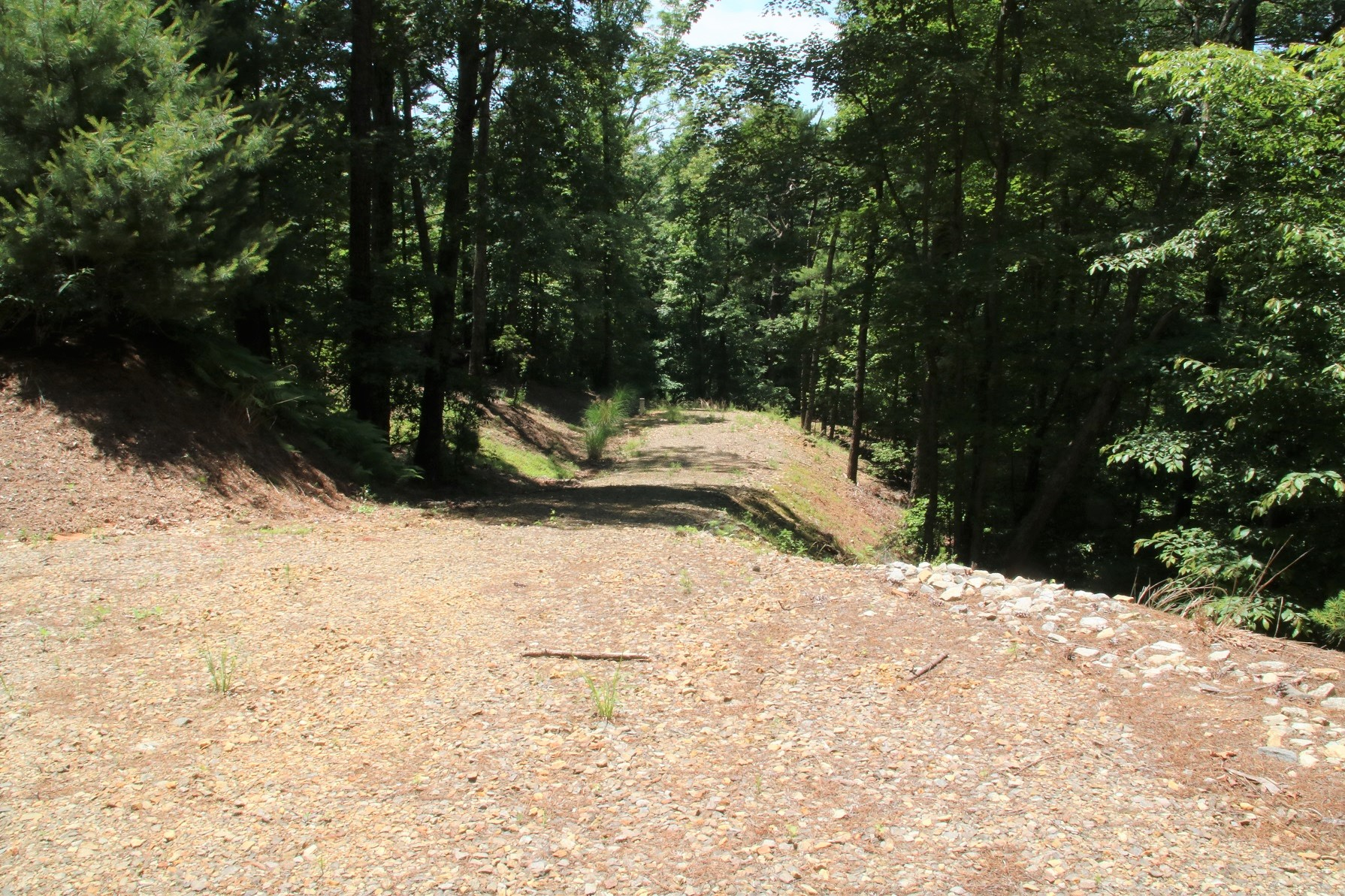 10 ACRES ON LEATHERWOOD MOUNTAIN ON FLAG BRANCH