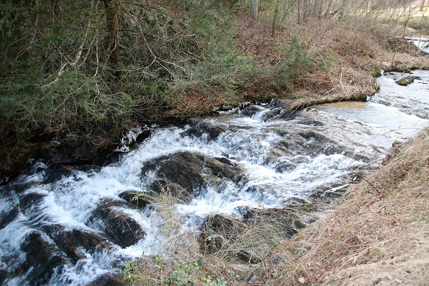 LAND TRACT 82.5 ACRES WITH BOLD MOUNTAIN STREAM FOR SALE IN WILKES COUNTY NC