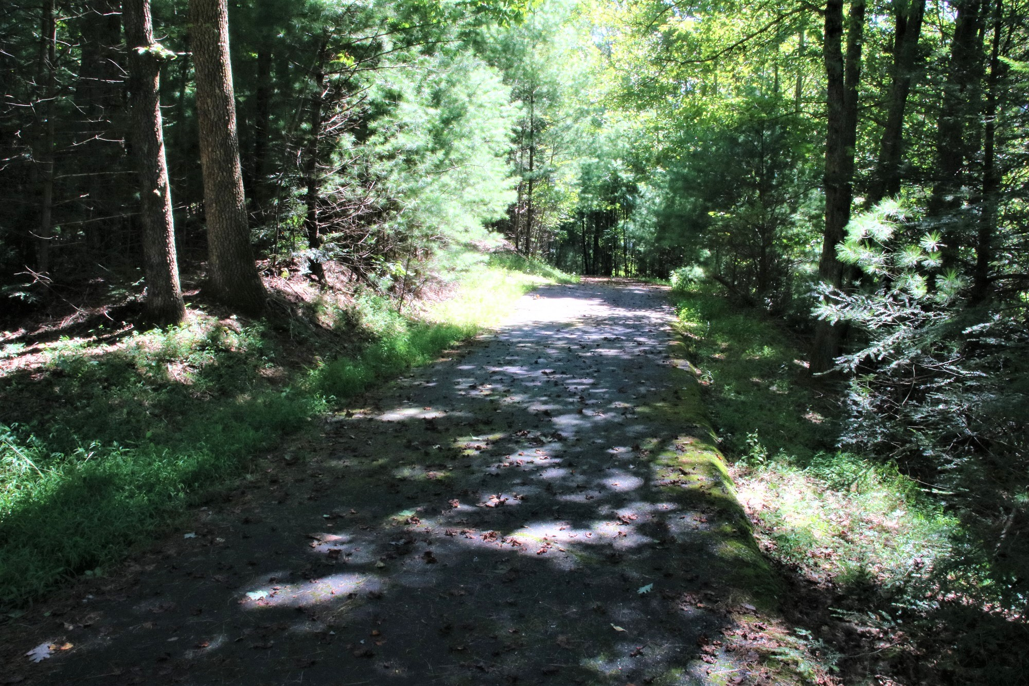 260 GRANNY'S RIDGE RD. FERGUSON, NC LOT 5 LONG-RANGE MOUNTAIN VIEWS ON LEATHERWOOD MOUNTAIN