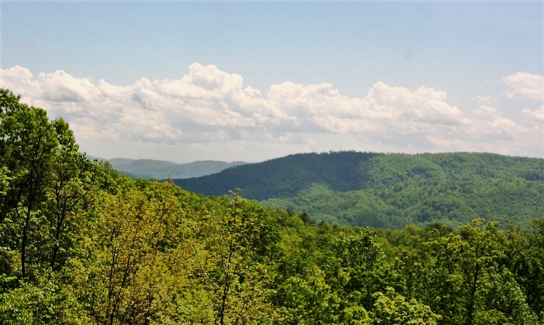 LEATHERWOOD MOUNTAIN LOT 40 LONG RANGE VIEWS NOW AVAILABLE